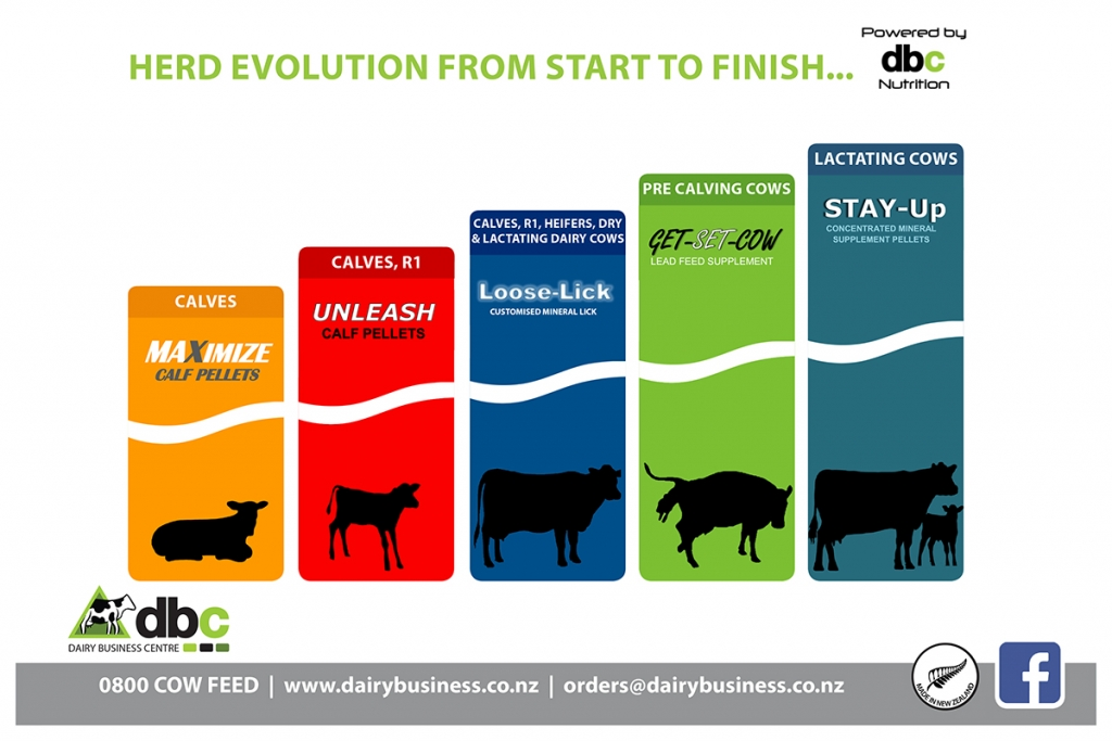 Herd evolution brochure
